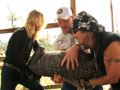 Billy the Exterminator: Moving Gators